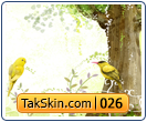 قالب دو ستونه مرغ عشق – قالب شماره ۲۶