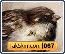 قالب دو ستونه فانتزی پرنده – قالب شماره ۶۷