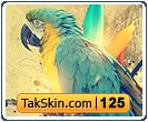 قالب وبلاگ دو ستونه فانتزی طوطی – قالب شماره ۱۲۵