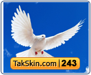 قالب وبلاگ سه ستونه کبوتر – قالب شماره ۲۴۳